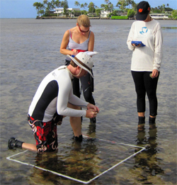 Community members conduct monitoring activities monthly in Maunalua Bay. Photo © TNC