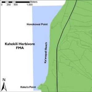 Boundaries of the KHFMA along the Kāʻanapali Coast, West Maui. © Hawai'i DLNR