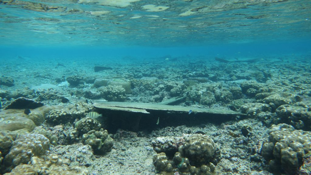 Boat damage on a reef. Photo © Alice Lawrence/American Samoa Department of Marine and Wildlife Resources