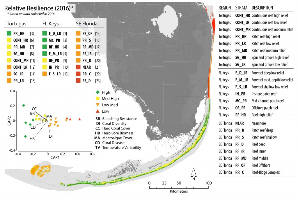 Figure 1. Relative resilience to climate change in the Florida Reef Tract, based on data collected in 2016. Rankings from highest to lowest relative resilience (1-23) are shown after strata codes top left, and descriptions for strata codes are right. Relative resilience is greatest in the FL Keys and lowest in SE Florida. Results of a canonical analysis of principal (CAP) coordinates are inset and show strong groupings among the relative categories in multivariate space. High resilience sites are strongly associated with high values for coral cover, bleaching resistance, and herbivore biomass and low levels of coral disease; the opposite is true for low resilience sites. (from Maynard et al. 2017)