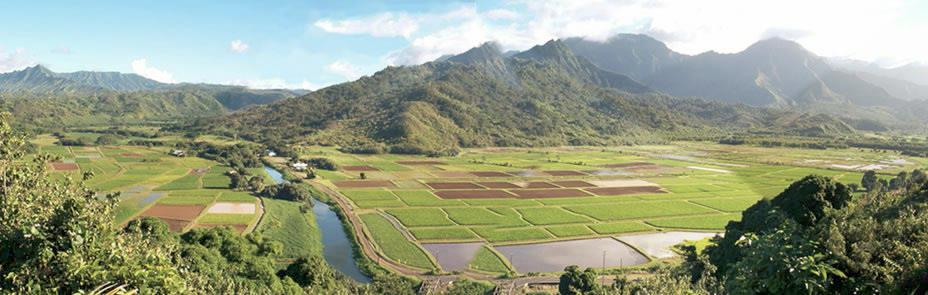 Hanalei River and Valley