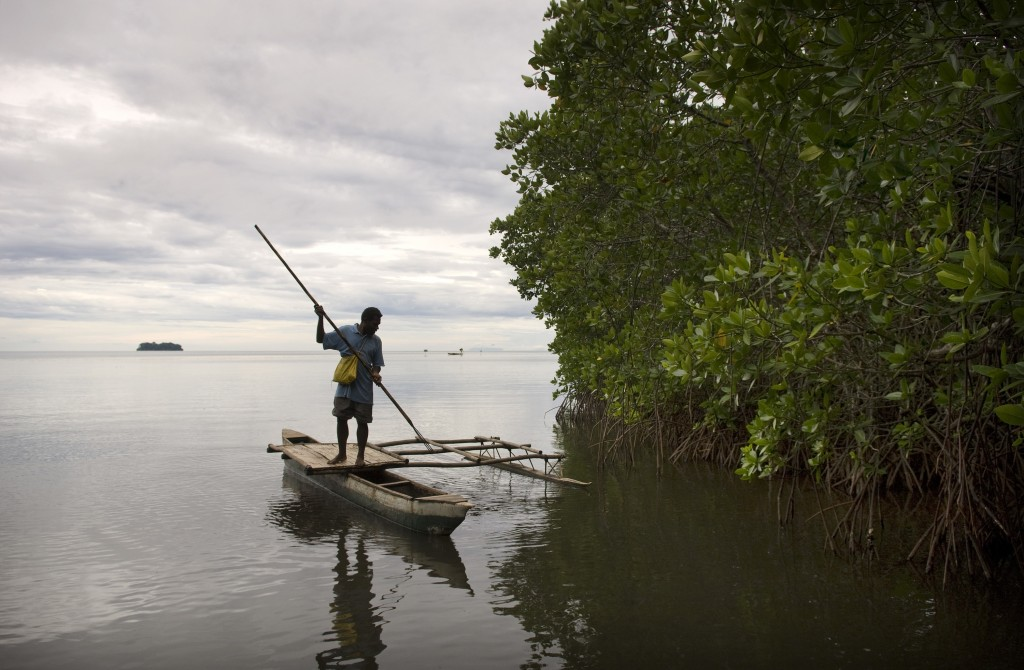 Protection of mangroves also protects sustainable fishing and livelihoods.