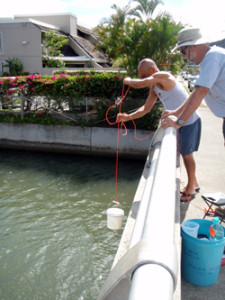 Community-supported water quality testing in Oahu to evaluate the stream inputs to reef systems. Photo © S. Kilarski