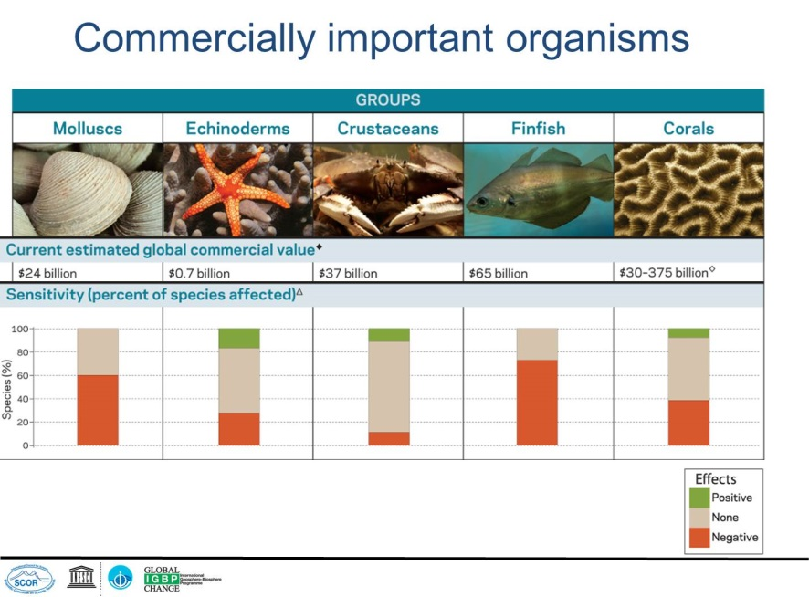 Commercially and ecologically important organisms. Source: IGBP, IOC, SCOR 2013