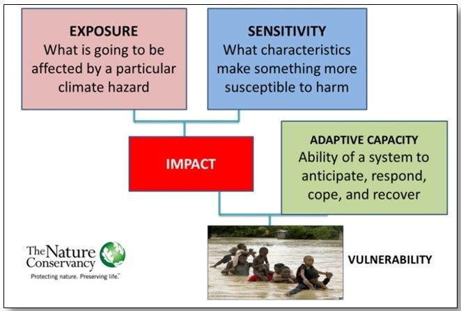 Vulnerability framework that uses exposure and sensitivity to estimate impact that is offset by the calculated adaptive capacity (adapted from Marshall 2009).