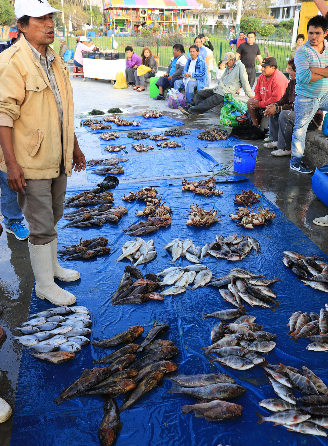 A fisher's catch of the day on sale dockside, Peru. Photo © Jeremy Rude/TNC