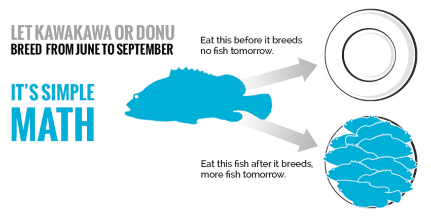 Example of illustrating a clear 'call to action' and what will happen if the audience takes action. Website graphics from the 4FJ Campaign, an initiative in Fiji to protect grouper during spawning months.