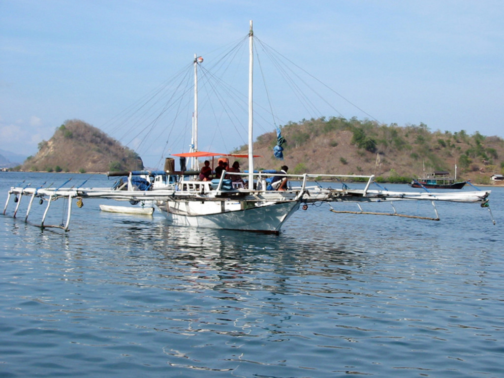 Local 'bagan', a light-attraction lift net fisher, in the Labuan Bajo harbour of Komodo National Park in Indonesia. Photo credit: Peter Mous