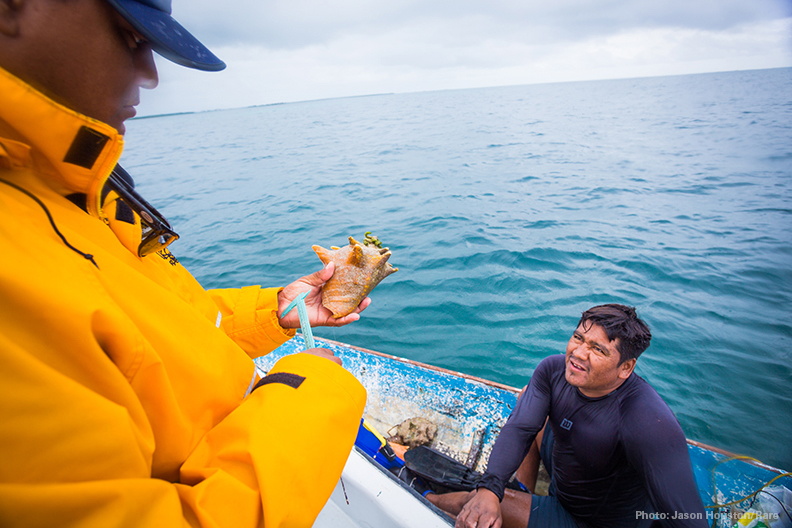 The Belize Fisheries Department conducts enforcement of lobster and conch catch. Photo © Jason Houston/Rare.