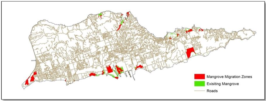 Mangrove mapping in St Croix. Areas in green show the distribution of existing mangrove forests. Areas in red indicate where mangroves may migrate in response to climate change based on mangrove habitat needs.