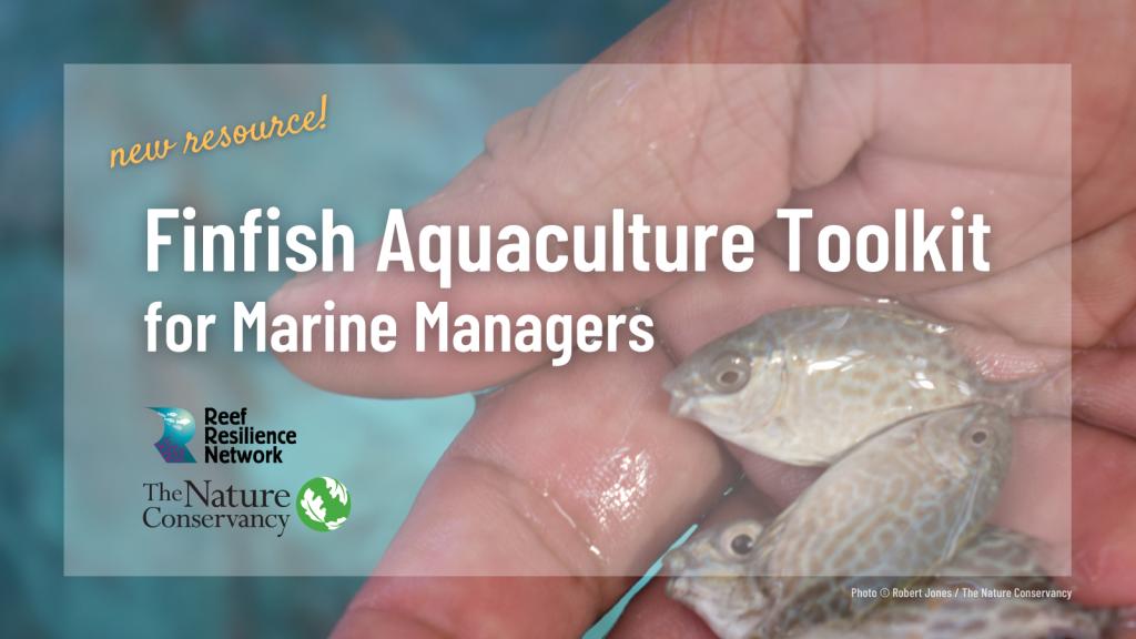 Boîte à outils pour l'aquaculture des poissons