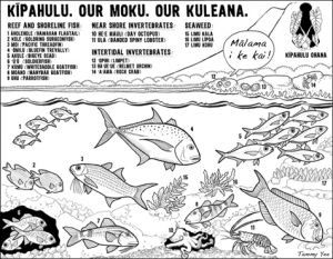 نشاط تلوين صممه Kīpahulu Ohana ، وهي مجموعة مجتمعية تعمل على زيادة الوعي بالموارد البحرية والعمل على إعادة الوفرة إلى شرق ماوي هاواي.