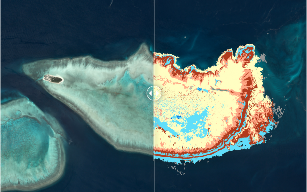 Upcoming Mentored Course: Remote Sensing and Mapping for Coral Reef Conservation