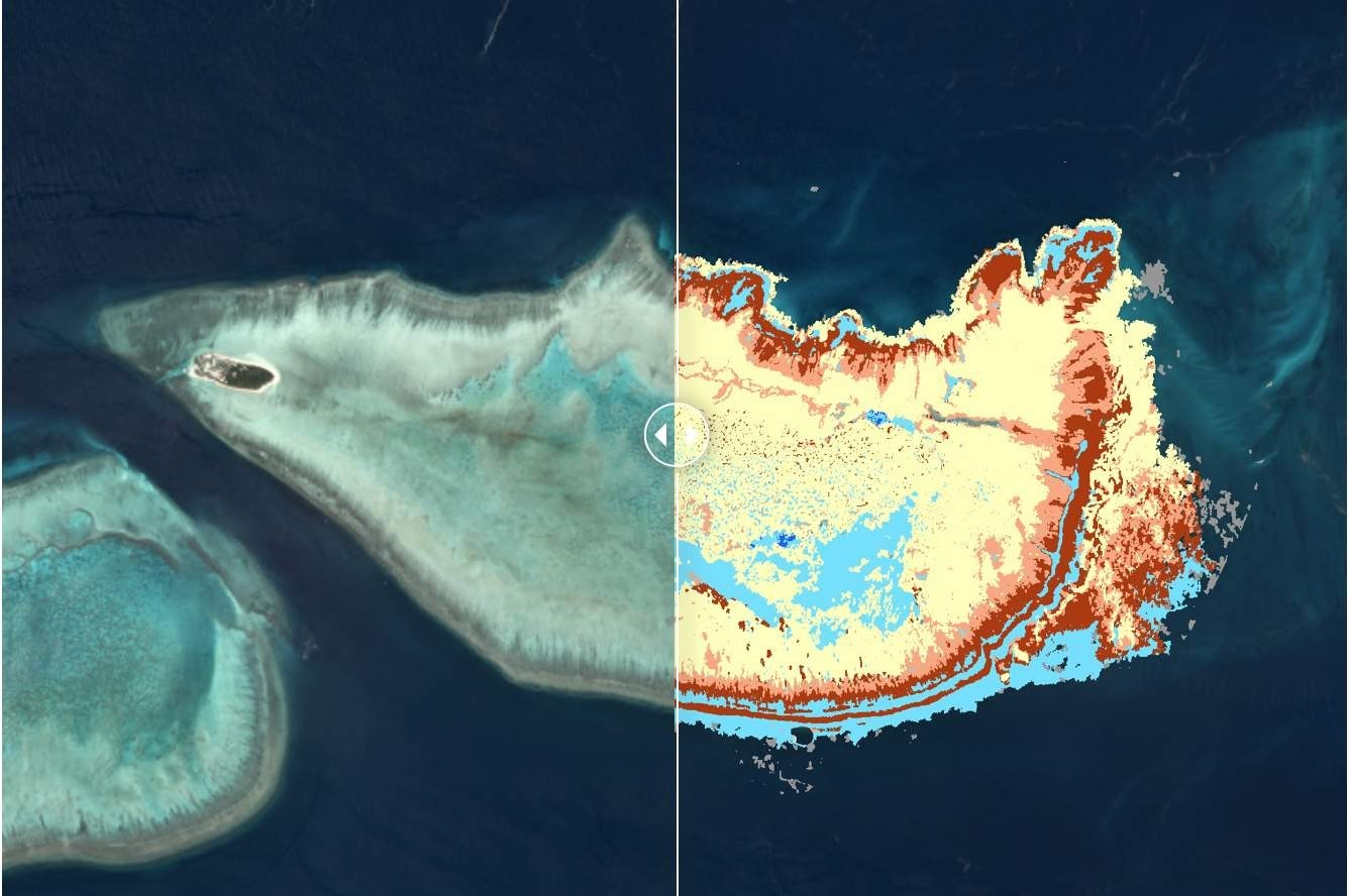 From satellite image to map of the reef with benthic classes